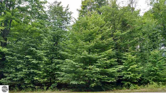 Beautiful wooded lot